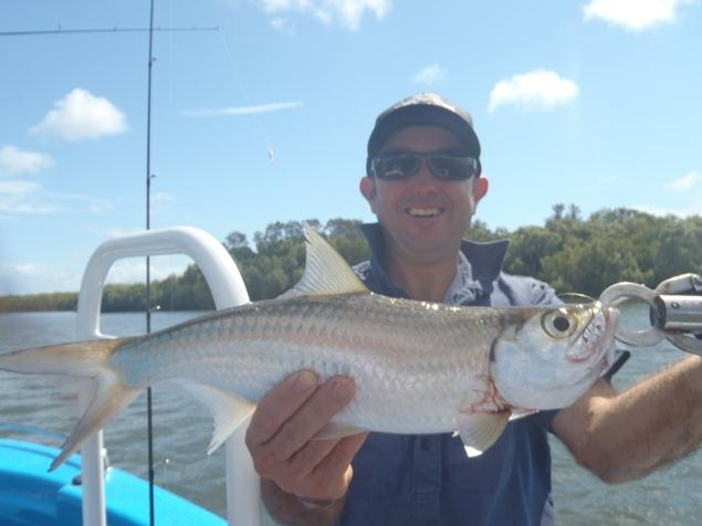 Anglers Advantage Fishing Charters Sunshine Coast-Tarpon on Soft Plastics-Gordon Allen