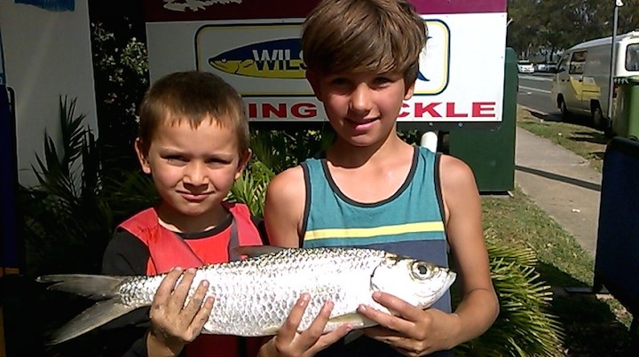 Luke Miles Smith Tarpon