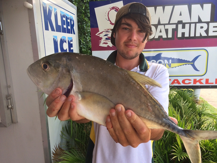 Aiden Greenwood Trevally