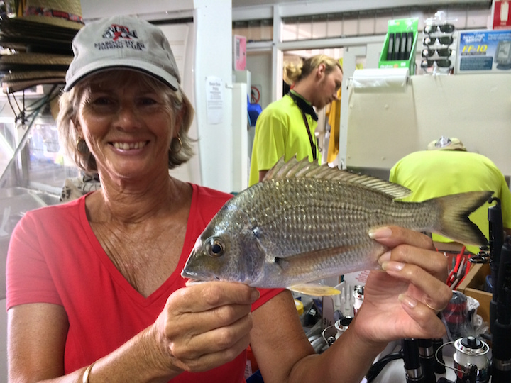 Bev Clark Yellow Fin Bream