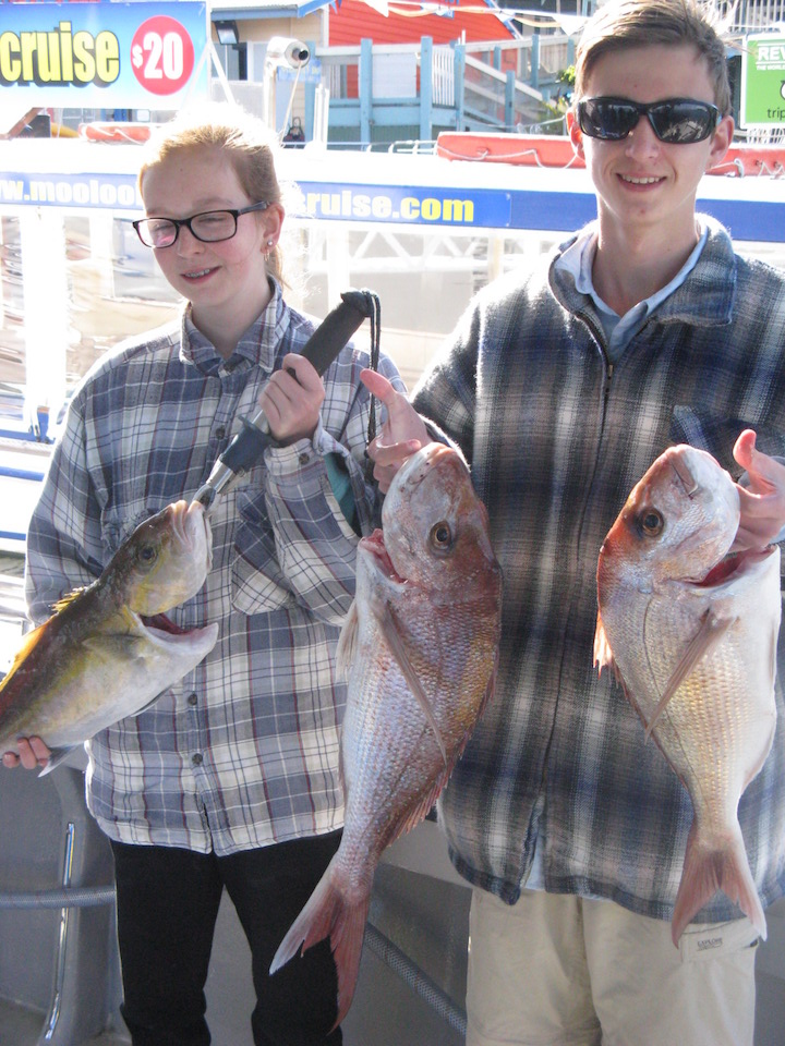 more squire and amberjack from the barwon banks