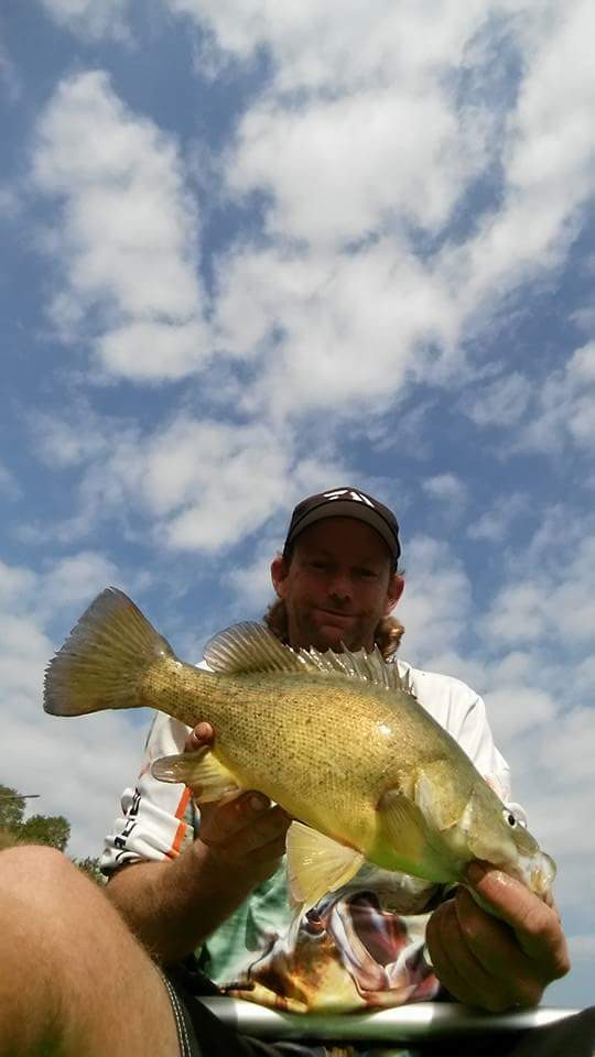 Peter baker fished the mary river around gympie for yellowbelly sunday