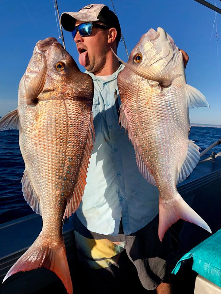DIP Fishing Charters Snapper