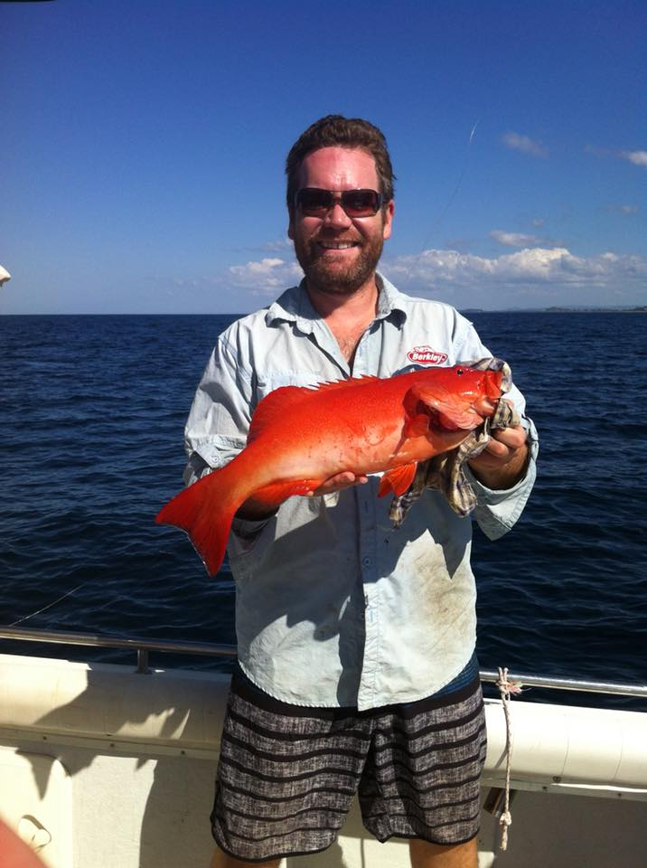 Mitchell Innes 51cm Coral Trout