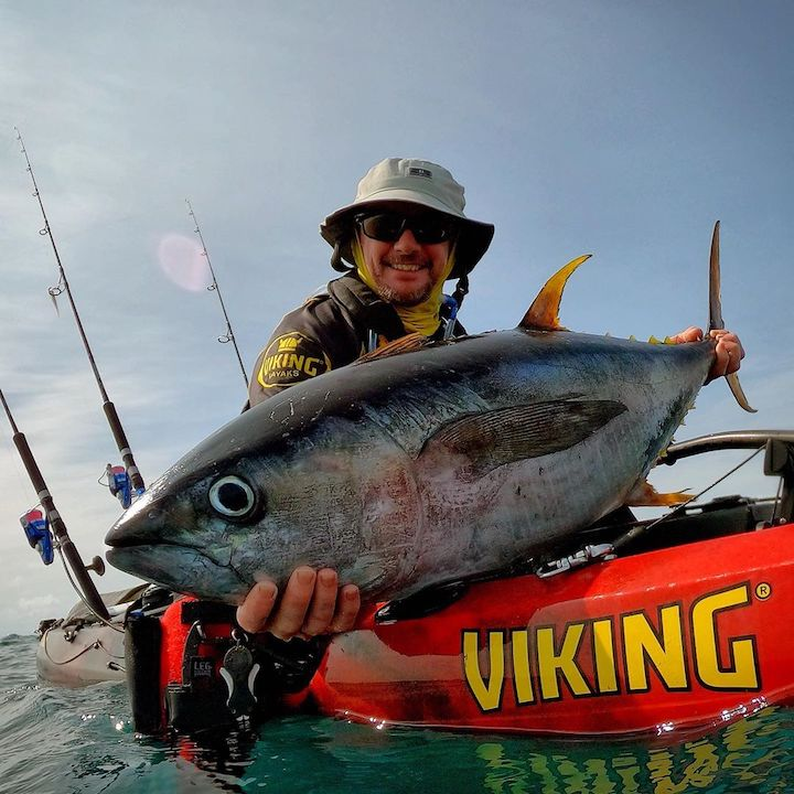 Jason Milne Viking Kayaks Yellowfin Tuna